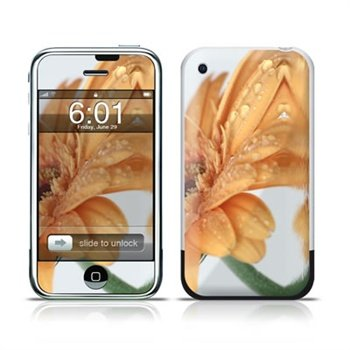 iPhone Golden Gerbera Folie