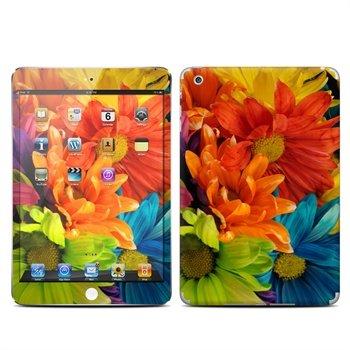 iPad Mini Colours Skin