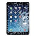 iPad Air Display Glas & Touch Screen Reparasjon